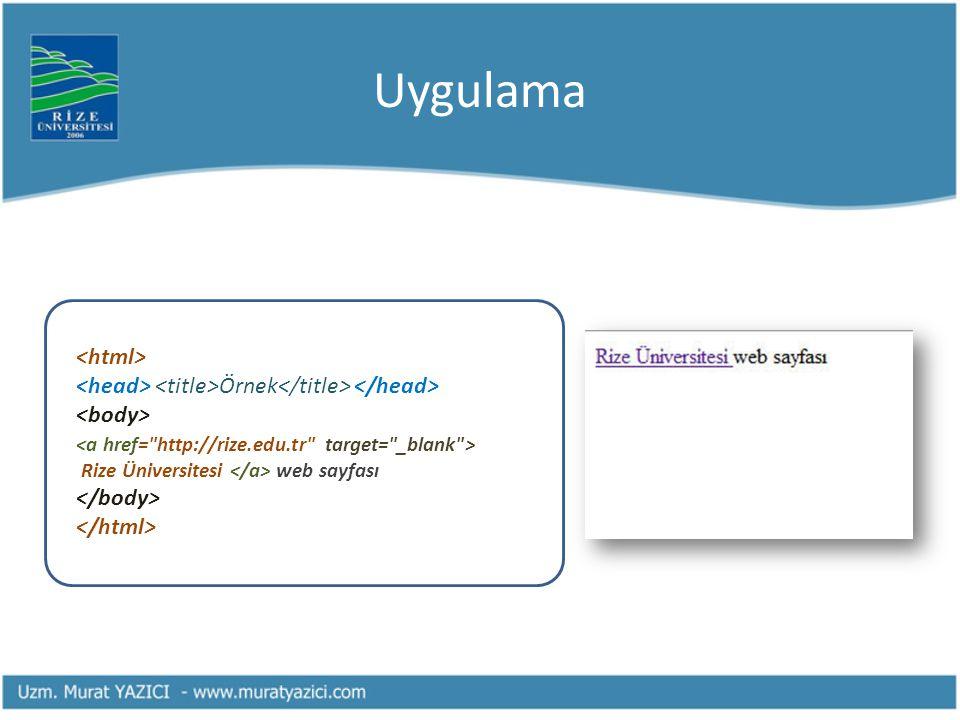 Uygulama Örnek Rize Üniversitesi web sayfası