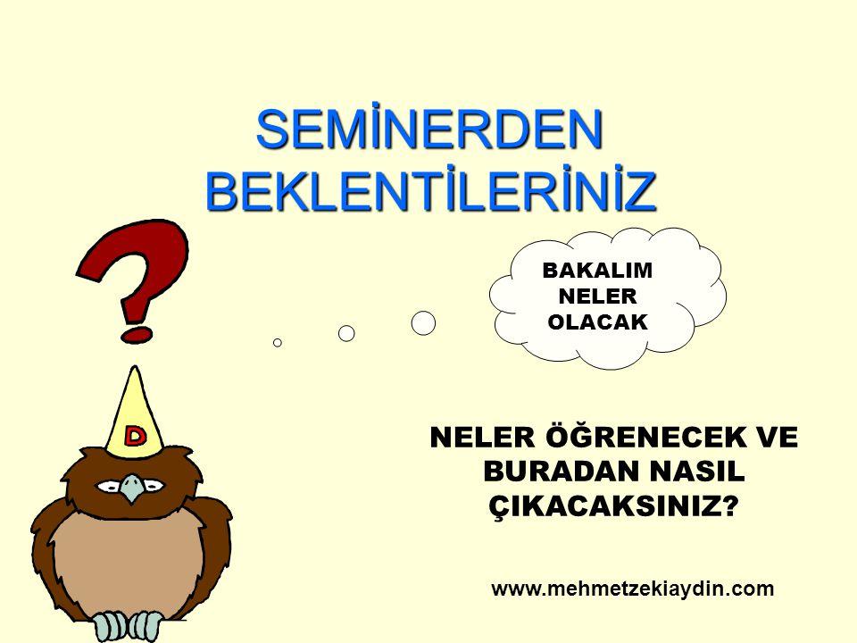 Bundan sonra www.mehmetzekiaydin.com
