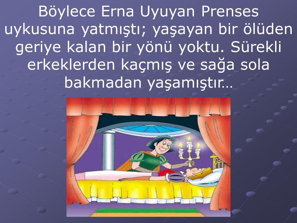 Böylece Erna Uyuyan Prenses uykusuna yatmıştı; yaşayan bir ölüden geriye kalan bir yönü yoktu. Sürekli erkeklerden kaçmış ve sağa sola bakmadan yaşamı