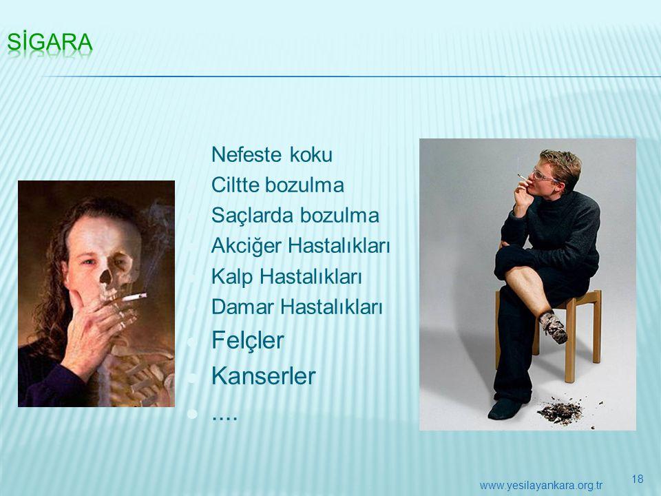  Nefeste koku  Ciltte bozulma  Saçlarda bozulma  Akciğer Hastalıkları  Kalp Hastalıkları  Damar Hastalıkları  Felçler  Kanserler .... 18 www.