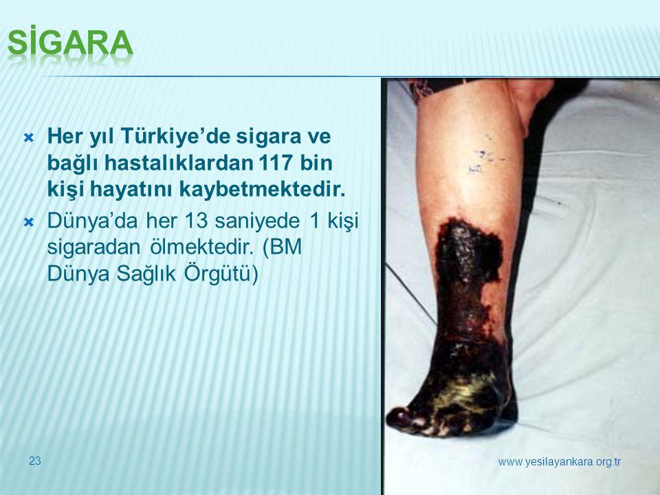 23  Her yıl Türkiye'de sigara ve bağlı hastalıklardan 117 bin kişi hayatını kaybetmektedir.  Dünya'da her 13 saniyede 1 kişi sigaradan ölmektedir. (