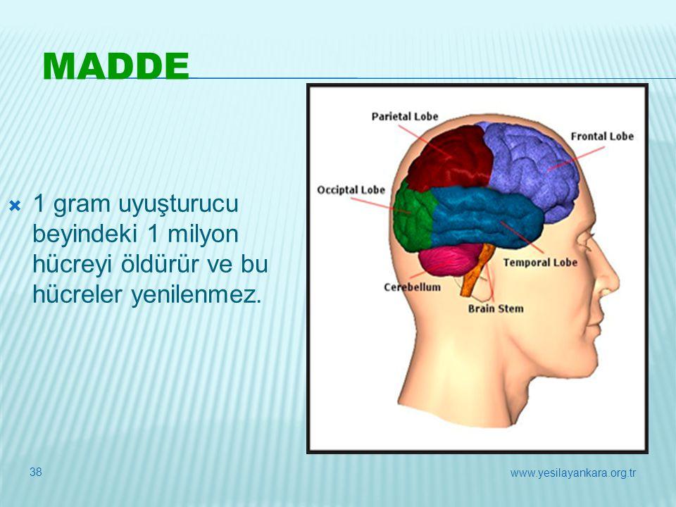  1 gram uyuşturucu beyindeki 1 milyon hücreyi öldürür ve bu hücreler yenilenmez. MADDE 38 www.yesilayankara.org.tr