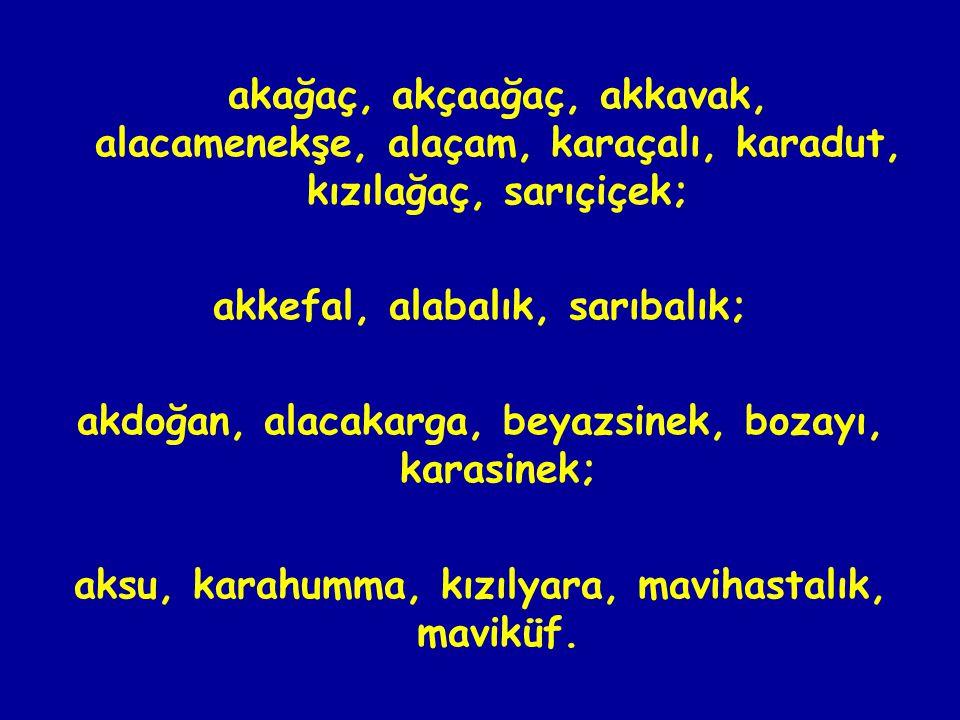 akağaç, akçaağaç, akkavak, alacamenekşe, alaçam, karaçalı, karadut, kızılağaç, sarıçiçek; akkefal, alabalık, sarıbalık; akdoğan, alacakarga, beyazsinek, bozayı, karasinek; aksu, karahumma, kızılyara, mavihastalık, maviküf.