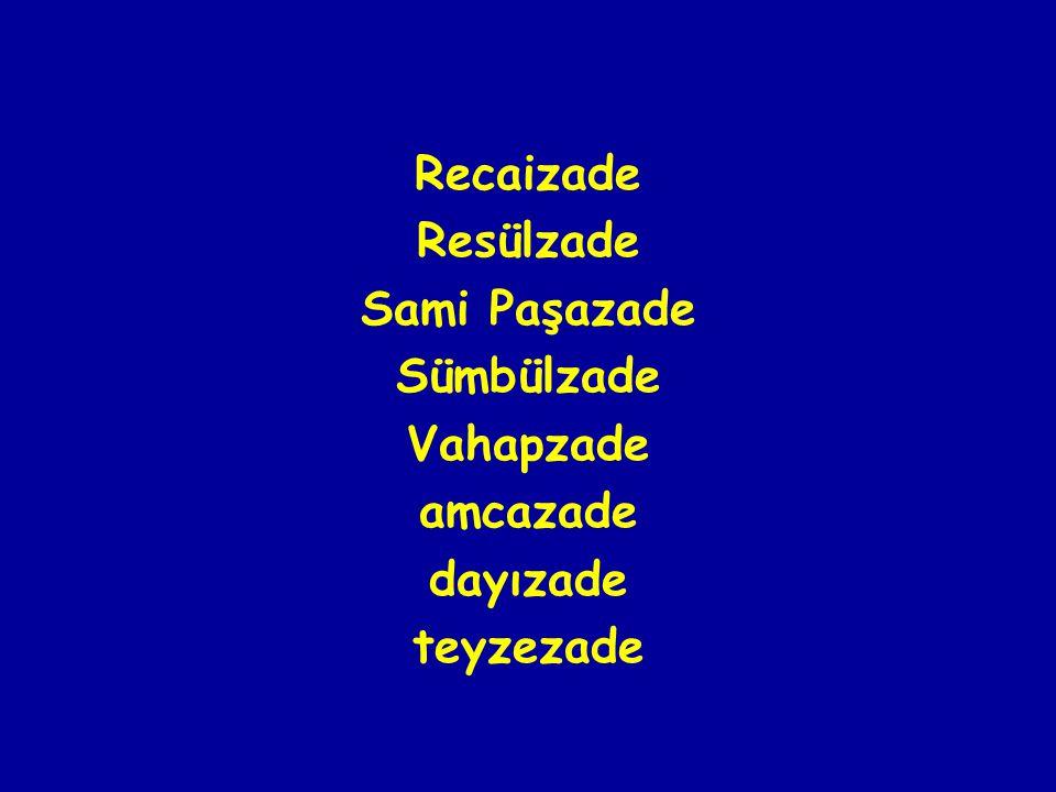 Recaizade Resülzade Sami Paşazade Sümbülzade Vahapzade amcazade dayızade teyzezade