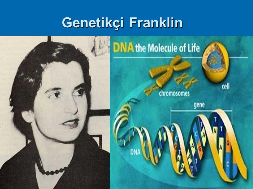 13 Genetikçi Franklin