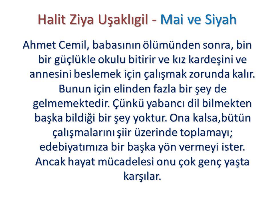 Halit Ziya Uşaklıgil - Mai ve Siyah Ahmet Cemil, babasının ölümünden sonra, bin bir güçlükle okulu bitirir ve kız kardeşini ve annesini beslemek için