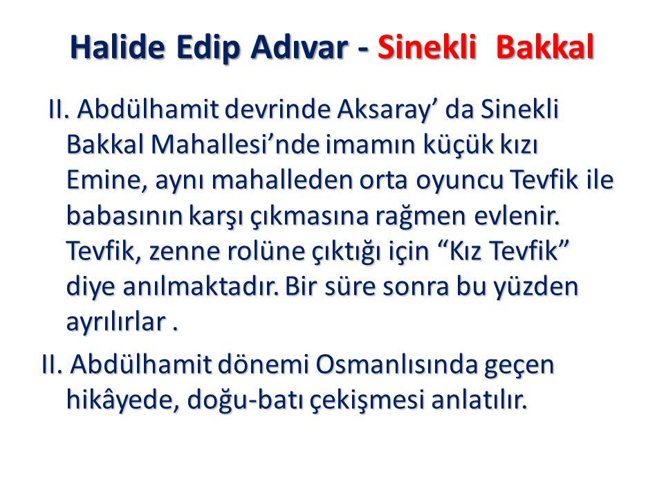 Halide Edip Adıvar - Sinekli Bakkal II. Abdülhamit devrinde Aksaray' da Sinekli Bakkal Mahallesi'nde imamın küçük kızı Emine, aynı mahalleden orta oyu