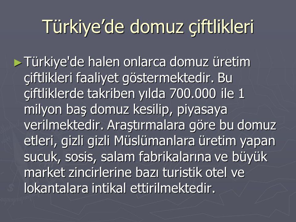 Türkiye'de domuz çiftlikleri ► Türkiye'de halen onlarca domuz üretim çiftlikleri faaliyet göstermektedir. Bu çiftliklerde takriben yılda 700.000 ile 1