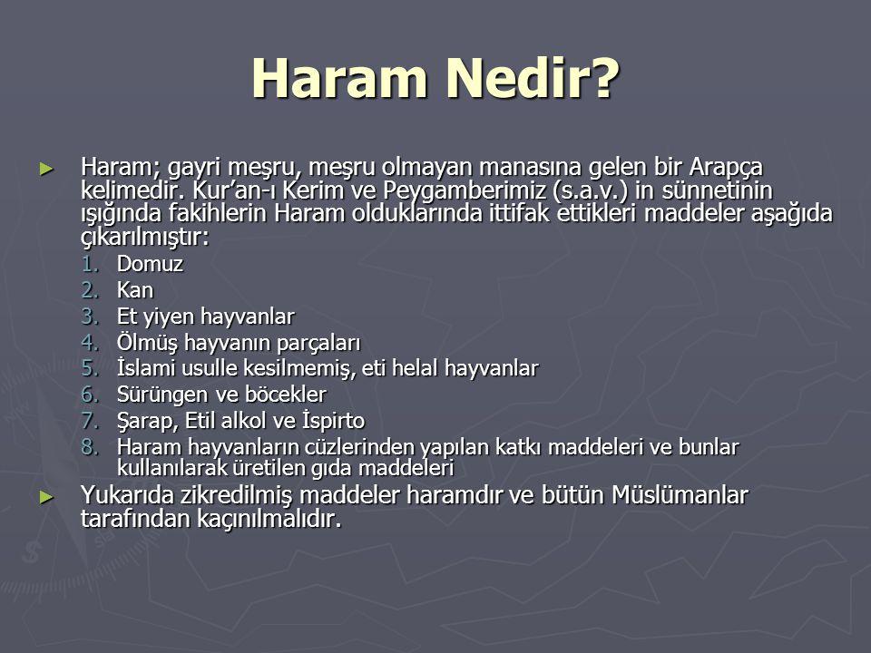Haram Nedir? ► Haram; gayri meşru, meşru olmayan manasına gelen bir Arapça kelimedir. Kur'an-ı Kerim ve Peygamberimiz (s.a.v.) in sünnetinin ışığında