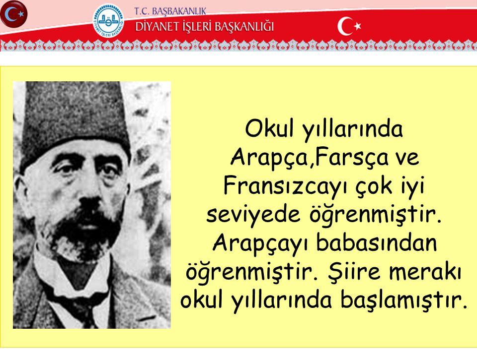Birinci Dünya savaşı sonrasında Anadolu işgal edilince içine bir ateş düşer.