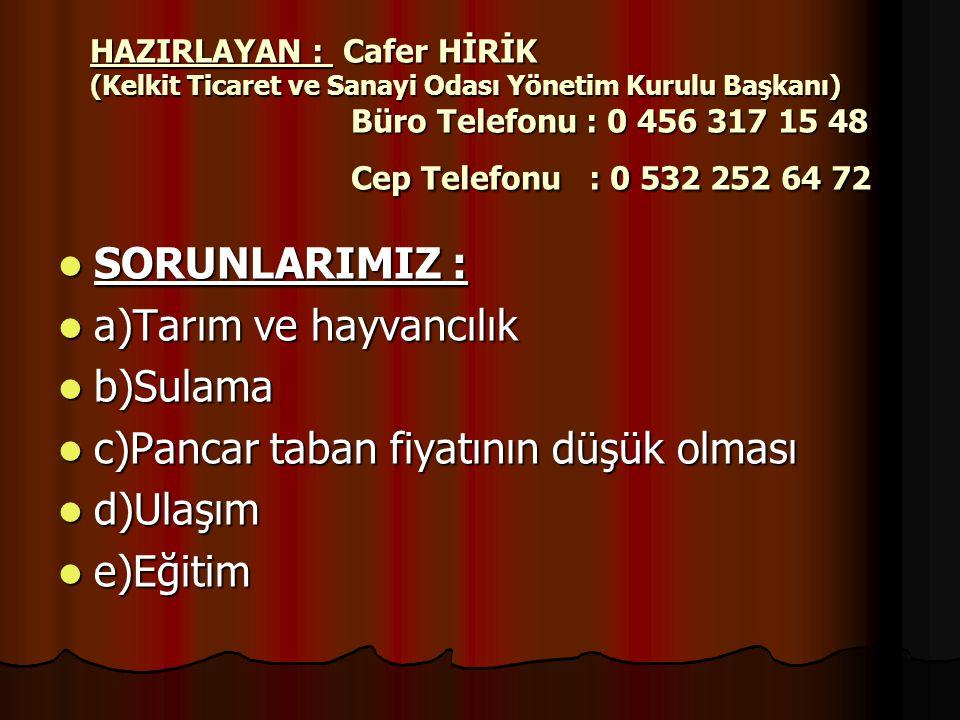 HAZIRLAYAN : Cafer HİRİK (Kelkit Ticaret ve Sanayi Odası Yönetim Kurulu Başkanı) Büro Telefonu : 0 456 317 15 48 Cep Telefonu : 0 532 252 64 72  SORU