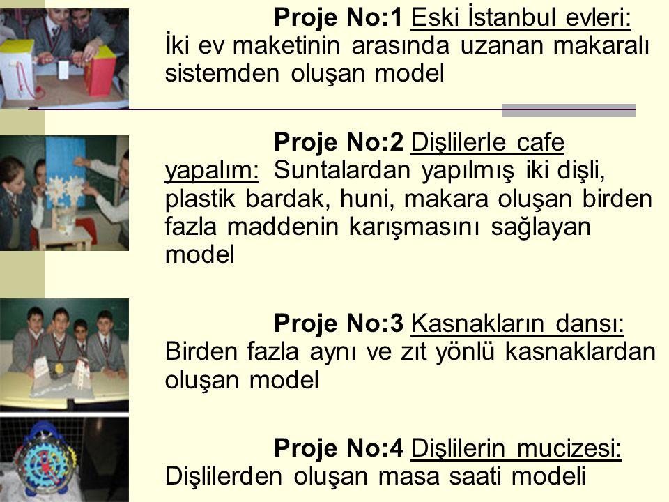 Proje No:1 Eski İstanbul evleri: İki ev maketinin arasında uzanan makaralı sistemden oluşan model Proje No:2 Dişlilerle cafe yapalım: Suntalardan yapı
