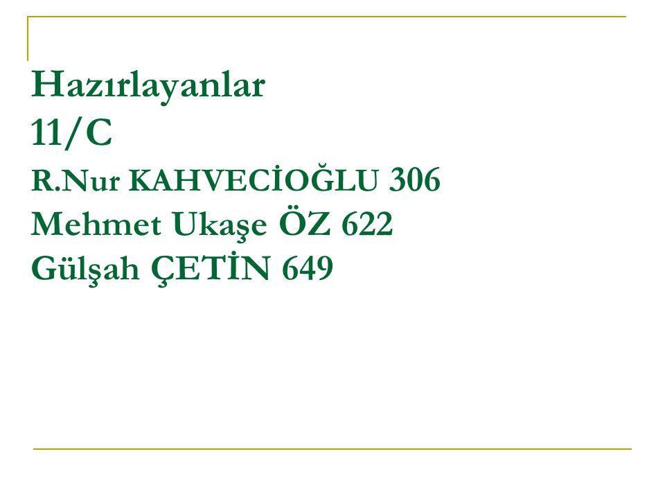 Hazırlayanlar 11/C R.Nur KAHVECİOĞLU 306 Mehmet Ukaşe ÖZ 622 Gülşah ÇETİN 649