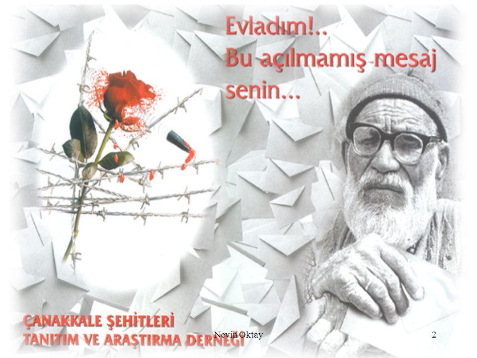 Nevin Oktay2