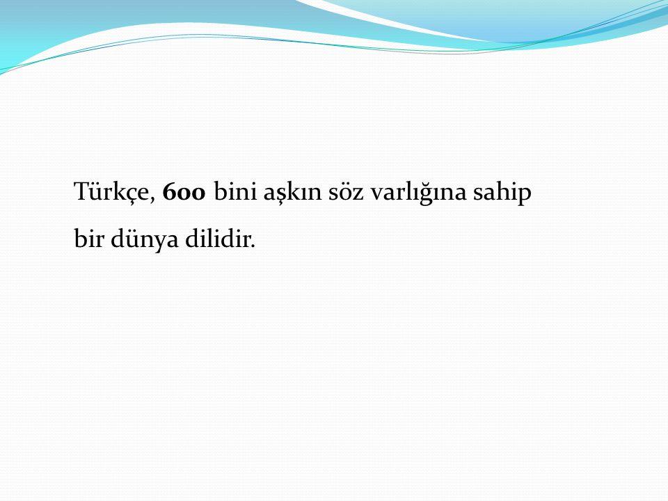 Türkçe, 600 bini aşkın söz varlığına sahip bir dünya dilidir.