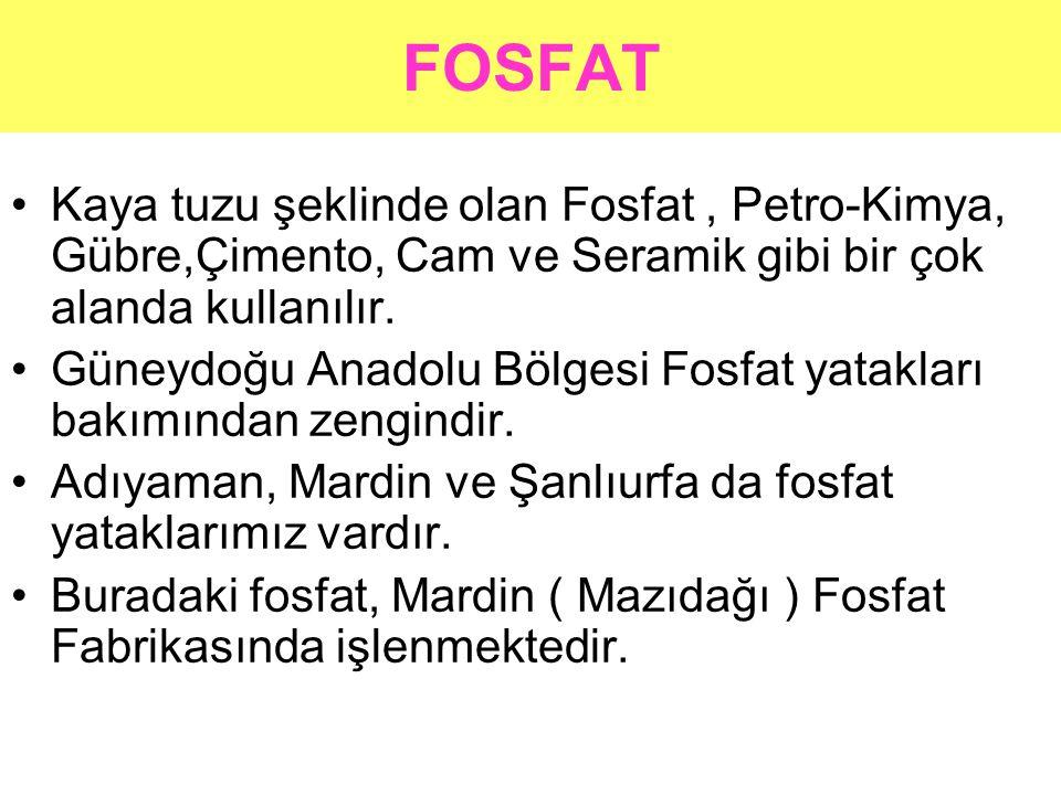 FOSFAT •Kaya tuzu şeklinde olan Fosfat, Petro-Kimya, Gübre,Çimento, Cam ve Seramik gibi bir çok alanda kullanılır. •Güneydoğu Anadolu Bölgesi Fosfat y