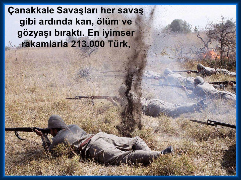 Arıburnu—Seddülbahir—Anafartalar--Merkeztepe --Sivritepe Kanlısırt derken nihayet İtilaf kuvvetleri kesin bir sonuç almak için, bütün takviye kuvvetle