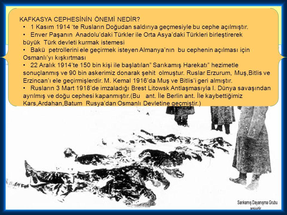 1-Osmanlı'nın savaştığı ilk taarruz cephesidir. 2-Osmanlı, malüb olduğu halde, bu cephede toprak kazandı. 3-Ruslar tarafından Osmanlı'ya karşı kullanı