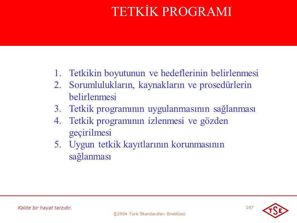 Kalite bir hayat tarzıdır. ©2004 Türk Standardları Enstitüsü 197 TETKİK PROGRAMI 1. 1.Tetkikin boyutunun ve hedeflerinin belirlenmesi 2. 2.Sorumlulukl