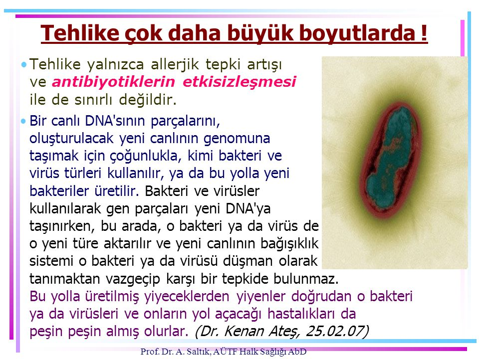 Prof. Dr. A. Saltık, AÜTF Halk Sağlığı AbD Tehlike çok daha büyük boyutlarda ! •Tehlike yalnızca allerjik tepki artışı ve antibiyotiklerin etkisizleşm
