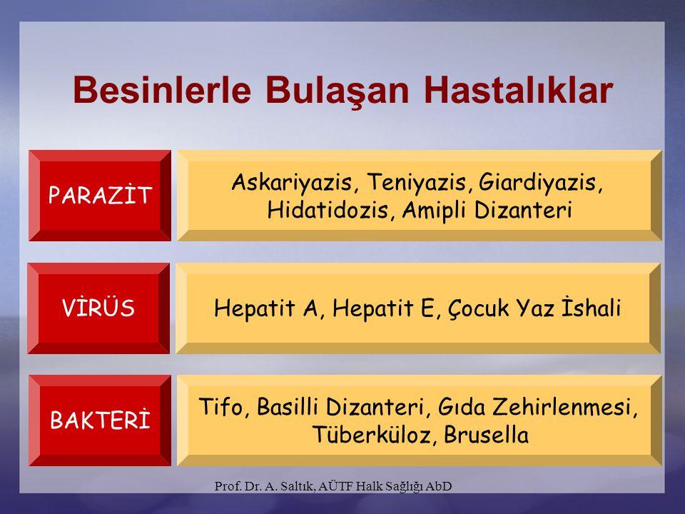 Prof. Dr. A. Saltık, AÜTF Halk Sağlığı AbD Besinlerle Bulaşan Hastalıklar PARAZİT Askariyazis, Teniyazis, Giardiyazis, Hidatidozis, Amipli Dizanteri V