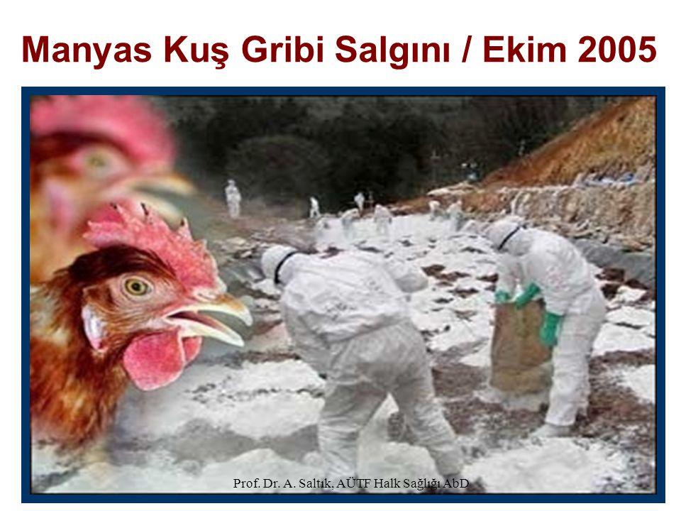 Manyas Kuş Gribi Salgını / Ekim 2005 Prof. Dr. A. Saltık, AÜTF Halk Sağlığı AbD