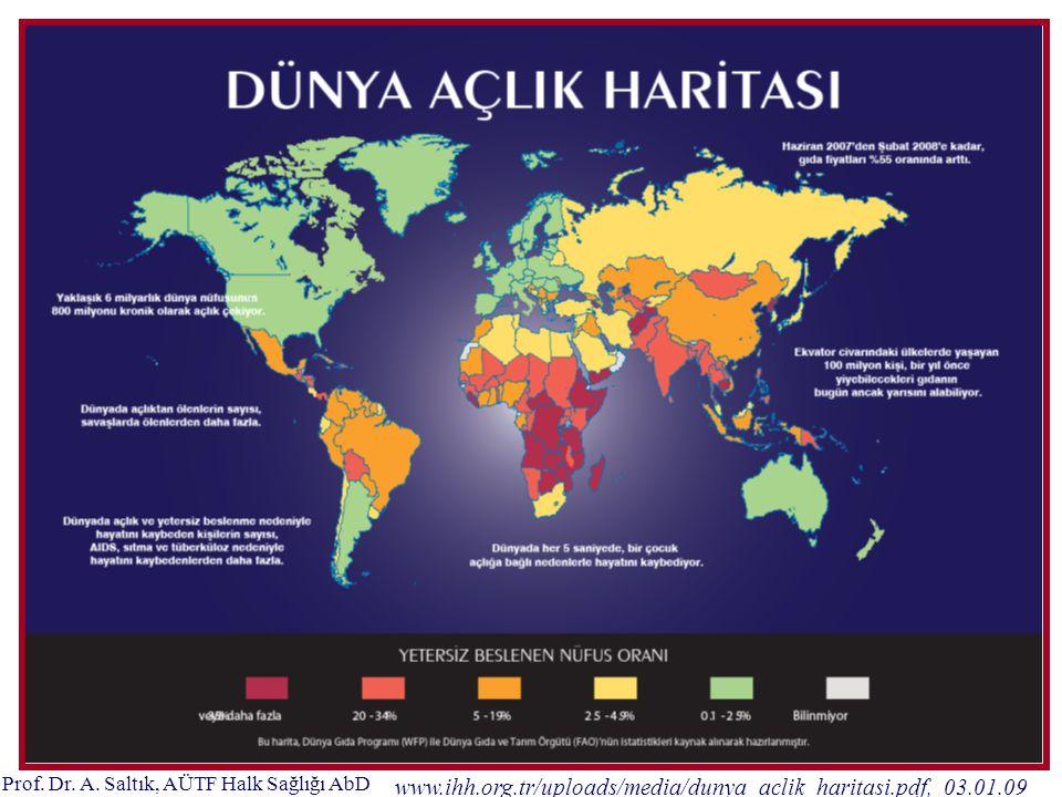 Prof. Dr. A. Saltık, AÜTF Halk Sağlığı AbD www.ihh.org.tr/uploads/media/dunya_aclik_haritasi.pdf, 03.01.09