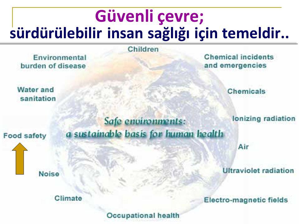 Prof. Dr. A. Saltık, AÜTF Halk Sağlığı AbD Güvenli çevre; sürdürülebilir insan sağlığı için temeldir..