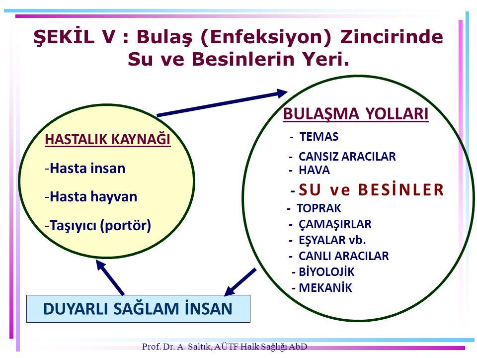 Prof. Dr. A. Saltık, AÜTF Halk Sağlığı AbD ŞEKİL V : Bulaş (Enfeksiyon) Zincirinde Su ve Besinlerin Yeri. HASTALIK KAYNAĞI -Hasta insan -Hasta hayvan