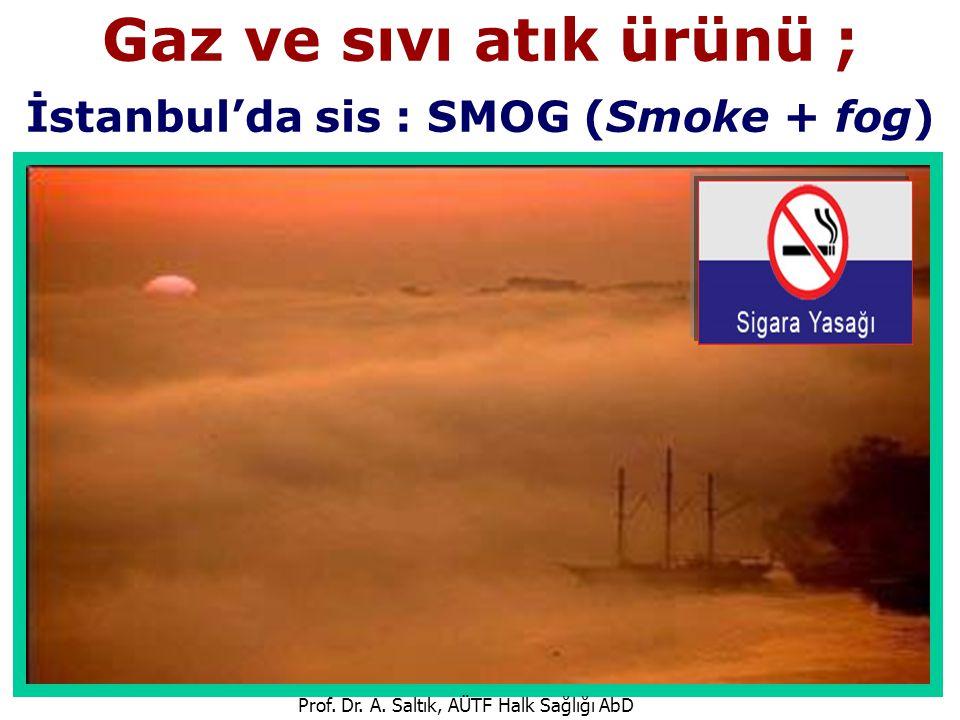 Gaz ve sıvı atık ürünü ; İstanbul'da sis : SMOG (Smoke + fog) Prof. Dr. A. Saltık, AÜTF Halk Sağlığı AbD