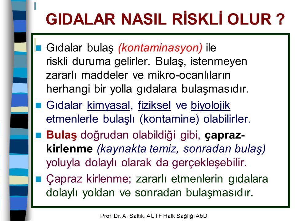 Prof.Dr. A. Saltık, AÜTF Halk Sağlığı AbD GIDALAR NASIL RİSKLİ OLUR .