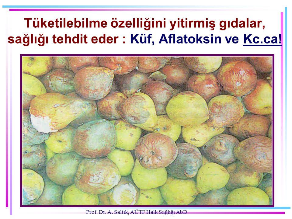 Prof. Dr. A. Saltık, AÜTF Halk Sağlığı AbD Tüketilebilme özelliğini yitirmiş gıdalar, sağlığı tehdit eder : Küf, Aflatoksin ve Kc.ca!