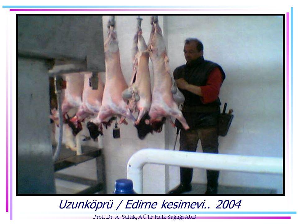 Prof. Dr. A. Saltık, AÜTF Halk Sağlığı AbD Uzunköprü / Edirne kesimevi.. 2004