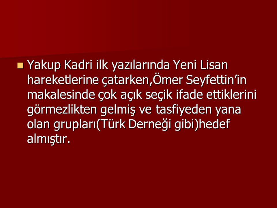  Yakup Kadri ilk yazılarında Yeni Lisan hareketlerine çatarken,Ömer Seyfettin'in makalesinde çok açık seçik ifade ettiklerini görmezlikten gelmiş ve tasfiyeden yana olan grupları(Türk Derneği gibi)hedef almıştır.