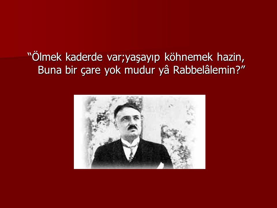  Ve duygulu şair milletimizin geçirdiği en sıkıntılı zamanlarda milli mücadeleye destek için şu güzel dörtlüğü söylemiştir; Şu kopan fırtına Türk ordusudur Yarabbi.