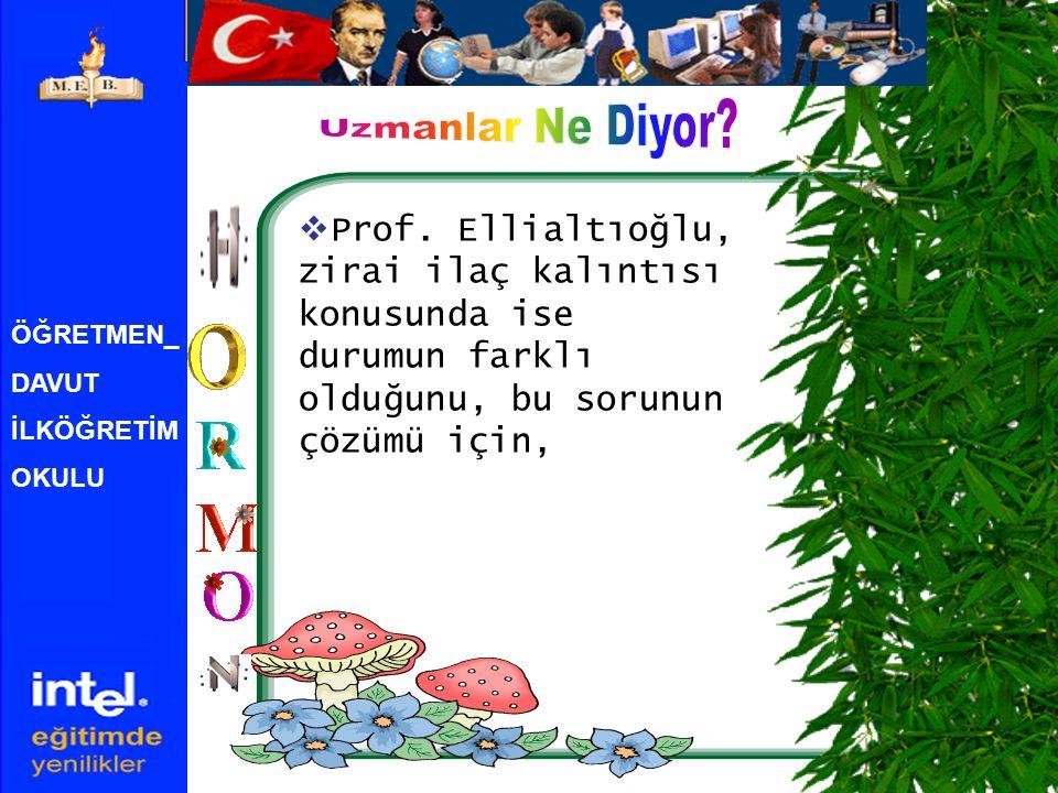 ÖĞRETMEN_ DAVUT İLKÖĞRETİM OKULU  Prof. Ellialtıoğlu, zirai ilaç kalıntısı konusunda ise durumun farklı olduğunu, bu sorunun çözümü için,