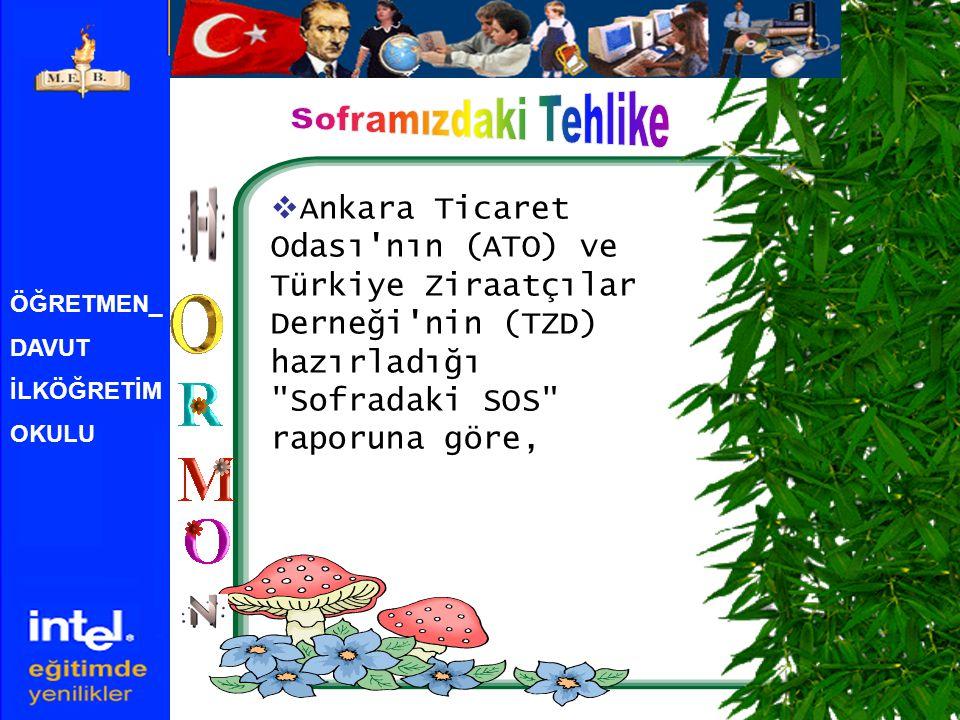 ÖĞRETMEN_ DAVUT İLKÖĞRETİM OKULU  Ankara Ticaret Odası nın (ATO) ve Türkiye Ziraatçılar Derneği nin (TZD) hazırladığı Sofradaki SOS raporuna göre,