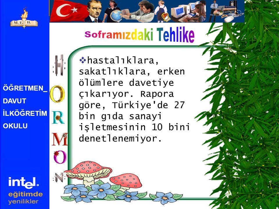 ÖĞRETMEN_ DAVUT İLKÖĞRETİM OKULU  hastalıklara, sakatlıklara, erken ölümlere davetiye çıkarıyor. Rapora göre, Türkiye'de 27 bin gıda sanayi işletmesi