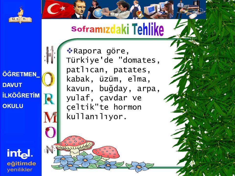 ÖĞRETMEN_ DAVUT İLKÖĞRETİM OKULU  Rapora göre, Türkiye de domates, patlıcan, patates, kabak, üzüm, elma, kavun, buğday, arpa, yulaf, çavdar ve çeltik te hormon kullanılıyor.