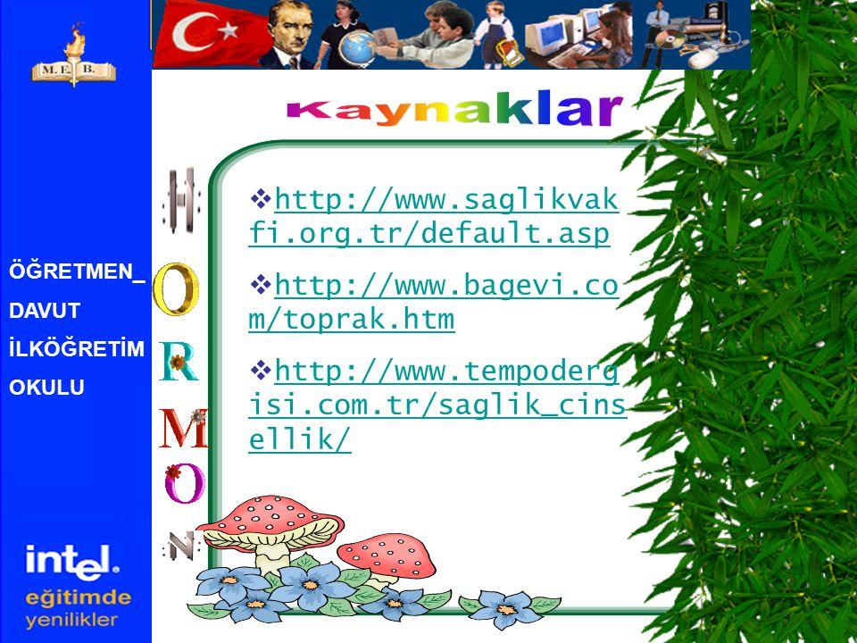 ÖĞRETMEN_ DAVUT İLKÖĞRETİM OKULU  http://www.saglikvak fi.org.tr/default.asp http://www.saglikvak fi.org.tr/default.asp  http://www.bagevi.co m/toprak.htm http://www.bagevi.co m/toprak.htm  http://www.tempoderg isi.com.tr/saglik_cins ellik/ http://www.tempoderg isi.com.tr/saglik_cins ellik/