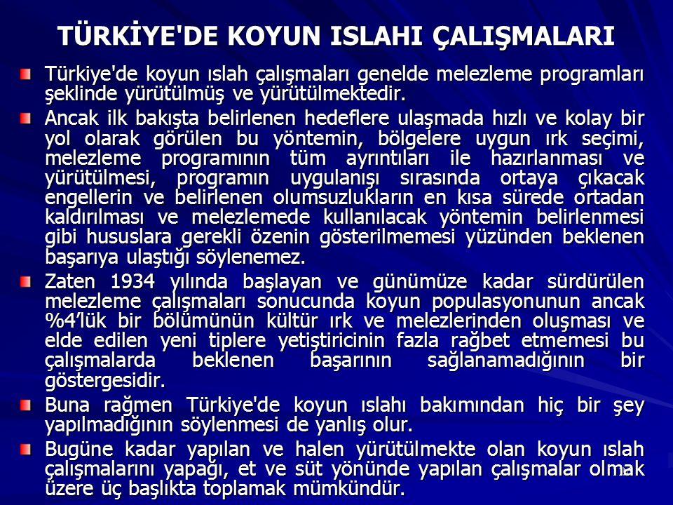 126 TÜRKİYE'DE KOYUN ISLAHI ÇALIŞMALARI Türkiye'de koyun ıslah çalışmaları genelde melezleme programları şeklinde yürütülmüş ve yürütülmektedir. Ancak