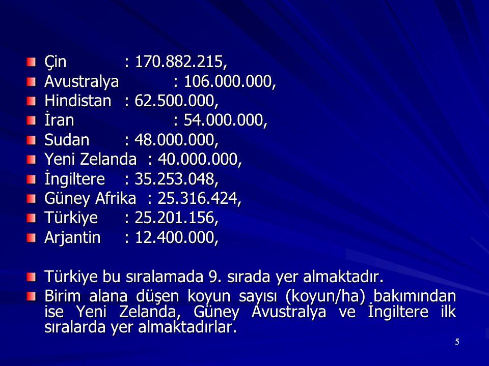 Türk Merinosu 50-55 kg canlı ağırlıkta, 50-70 kg süt, 60-64 S kalitesinde 3-3.5 kg yapağı verimine sahip, ikizlik oranı % 10- 25 arasında değişen, yağsız ince uzun kuyruklu bir ırktır.