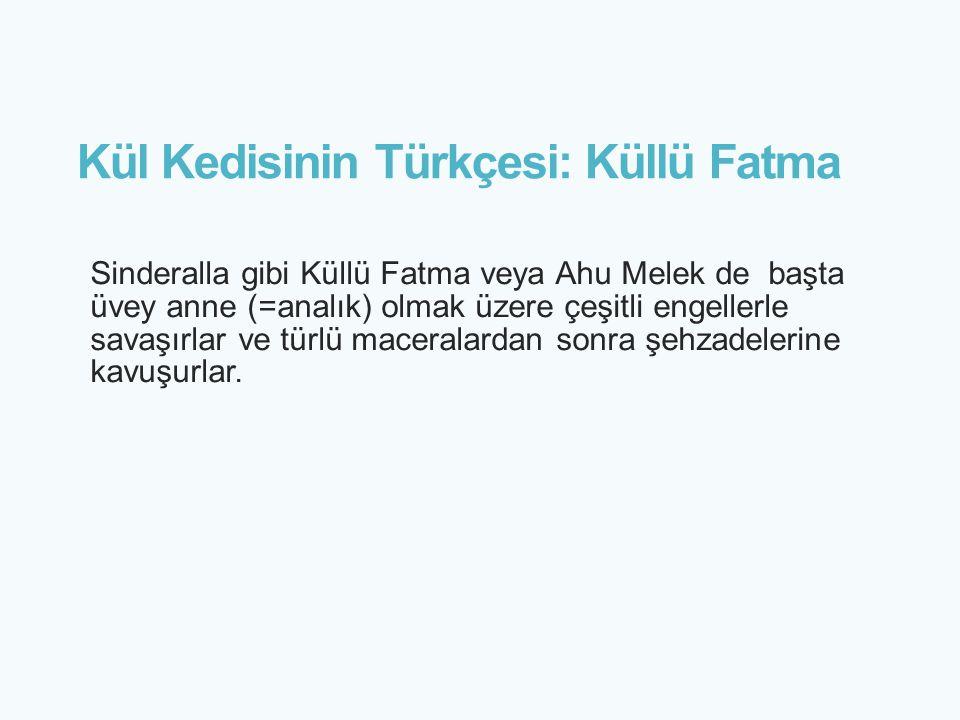Kül Kedisinin Türkçesi: Küllü Fatma Sinderalla gibi Küllü Fatma veya Ahu Melek de başta üvey anne (=analık) olmak üzere çeşitli engellerle savaşırlar