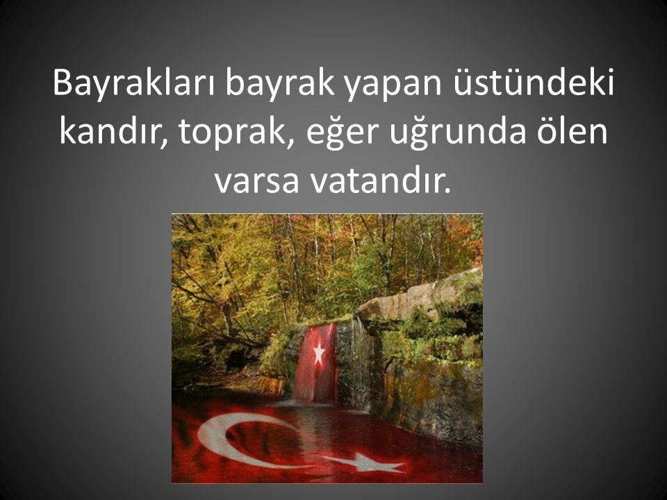 Türklerden başka dini ve vatanı uğruna canını vermeye hazır asker görmedim. *Hamilton