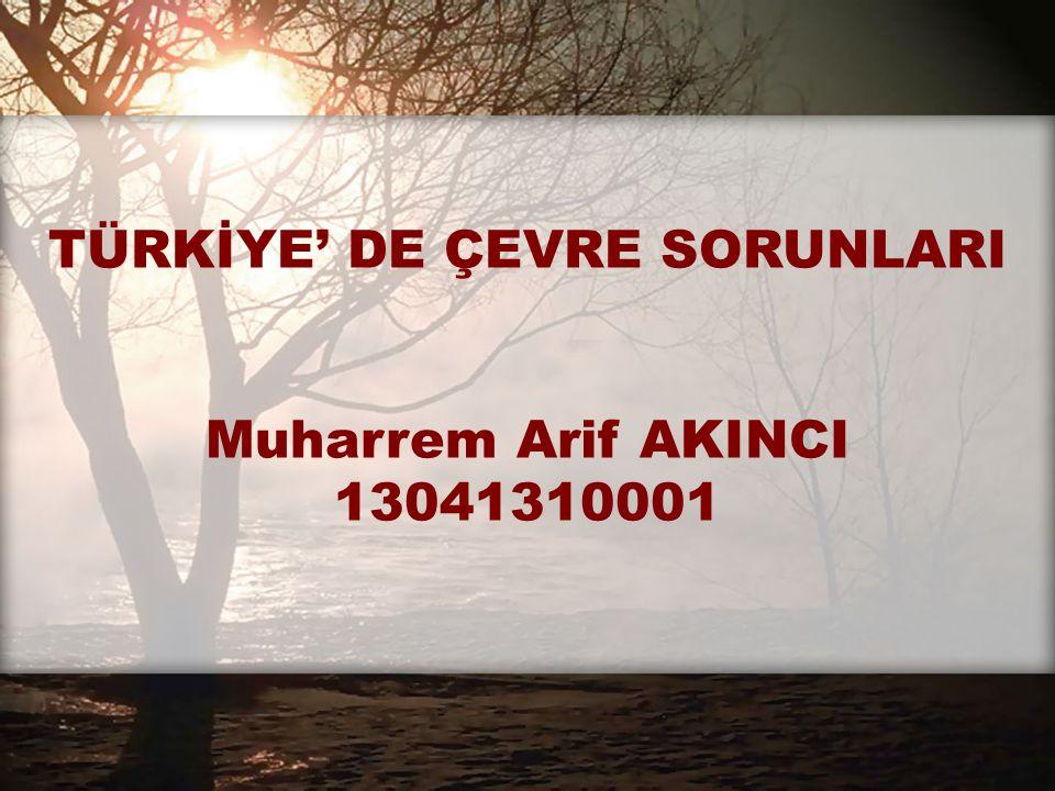 TÜRKİYE' DE ÇEVRE SORUNLARI Muharrem Arif AKINCI 13041310001