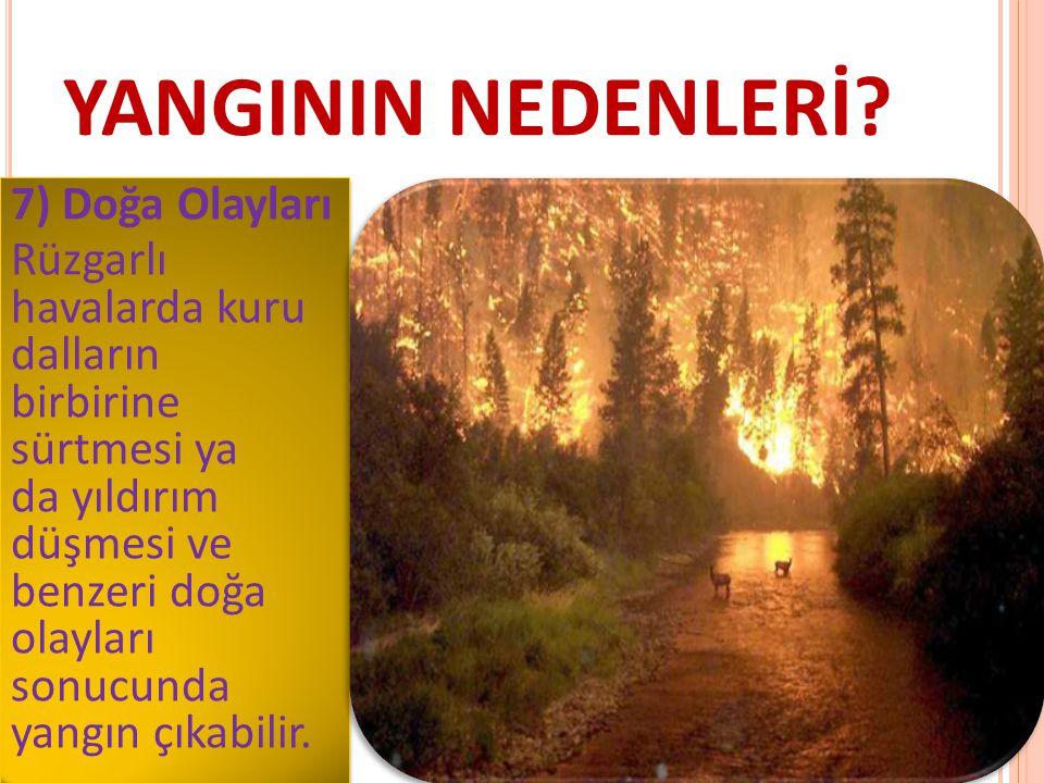 YANGININ NEDENLERİ? 7) Doğa Olayları Rüzgarlı havalarda kuru dalların birbirine sürtmesi ya da yıldırım düşmesi ve benzeri doğa olayları sonucunda yan