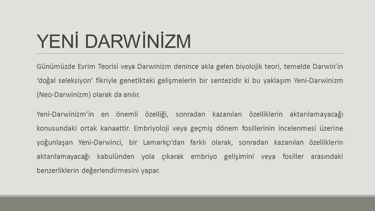 YENİ DARWİNİZM Günümüzde Evrim Teorisi veya Darwinizm denince akla gelen biyolojik teori, temelde Darwin'in 'doğal seleksiyon' fikriyle genetikteki ge
