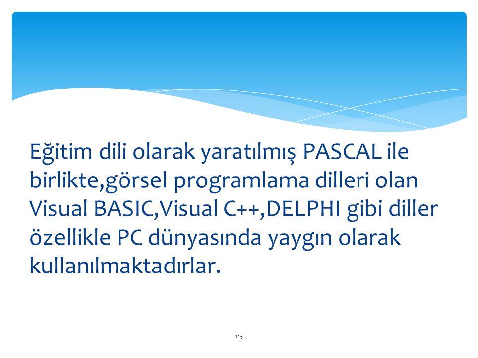 Eğitim dili olarak yaratılmış PASCAL ile birlikte,görsel programlama dilleri olan Visual BASIC,Visual C++,DELPHI gibi diller özellikle PC dünyasında y