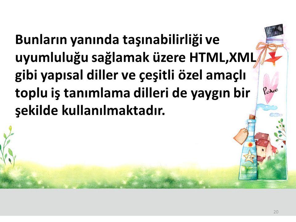Bunların yanında taşınabilirliği ve uyumluluğu sağlamak üzere HTML,XML gibi yapısal diller ve çeşitli özel amaçlı toplu iş tanımlama dilleri de yaygın