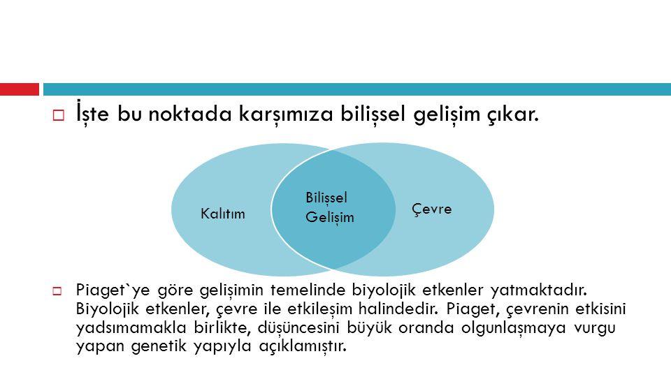 1.Bilişsel Gelişimi Etkileyen Faktörler  a. Olgunlaşma  b.